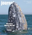The Gray Whale Die-off